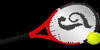 Raqueta y pelotas